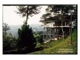 Luxurious Villa in Mega Indah Villa Estate - SH8009
