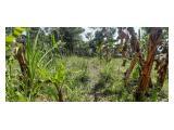 Tanah di Tanjungsari Sumedang